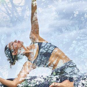 El camino del yoga